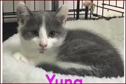 Yuna4
